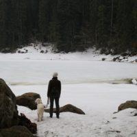 aktuelles-glaswaldsee
